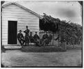 Washington, District of Columbia. Officers of companies, F and K, 3d Regiment Massachusetts Artillery at Fort Stevens
