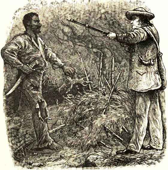 The Discovery of Nat Turner
